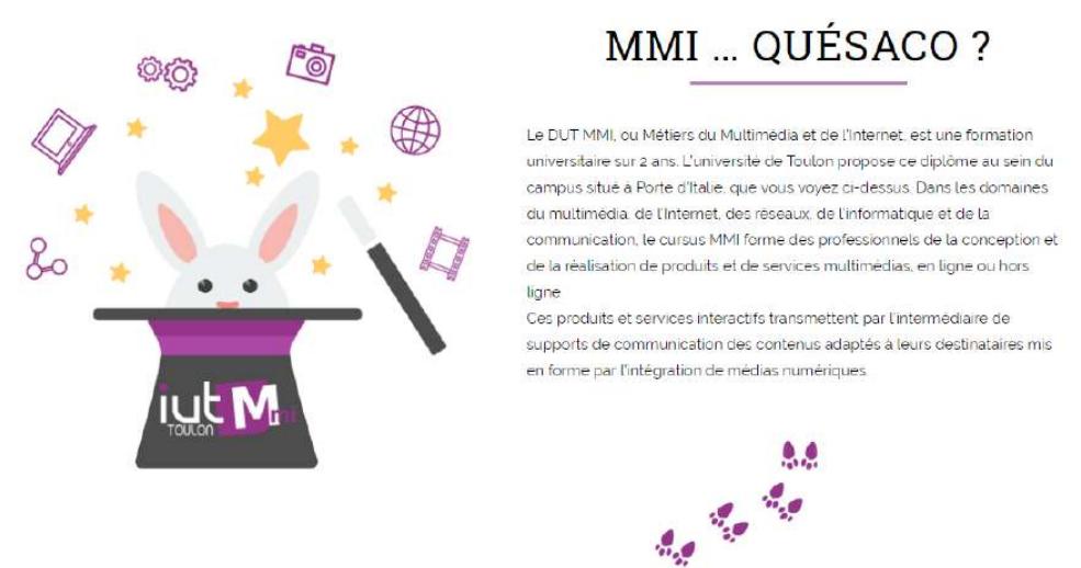 MMI Toulon - Capture d'écran du site